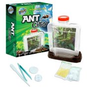 Tedco Ant City