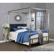 ACME Raegan Queen Canopy Bed in Acrylic, Antique Brass and Gray Velvet