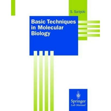 Springer Lab Manuals: Basic Techniques in Molecular Biology (Basic Techniques In Biochemistry And Molecular Biology)