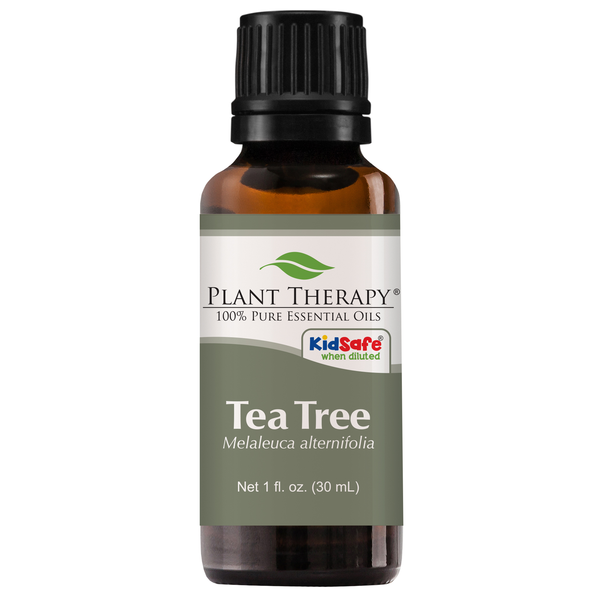 Plant Therapy Tea Tree Essential Oil | 100% Pure, Undiluted, Natural Aromatherapy, Therapeutic Grade | 30 mL (1 oz)
