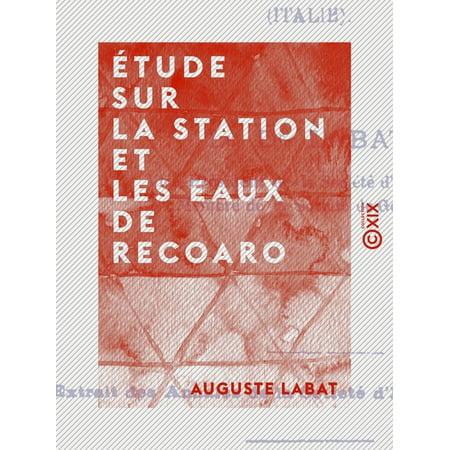 Étude sur la station et les eaux de Recoaro - eBook