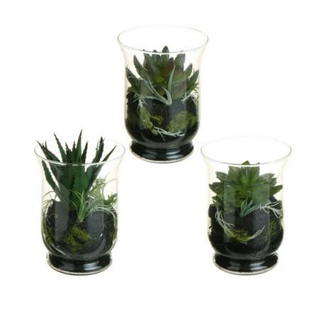 """Lot de 3 mixtes du sud-ouest artificiel Cactus et Succulent Plant terrariums 6"""" - image 1 de 1"""