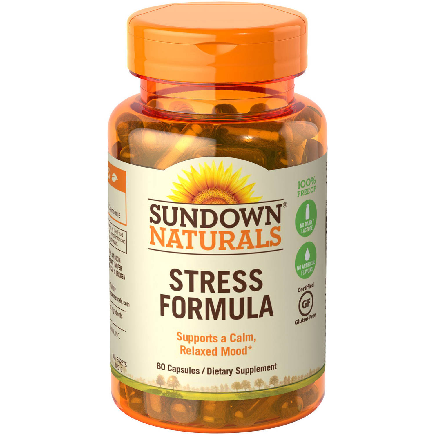 Sundown Naturals L-Theanine Stress Formula with Calming Blend Dietary Supplement Capsules, 60 count