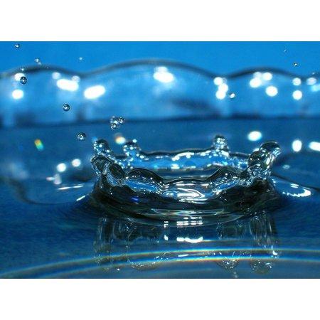 LAMINATED POSTER Blue Water Net Drop Poster Print 24 x 36 (Drop Net)