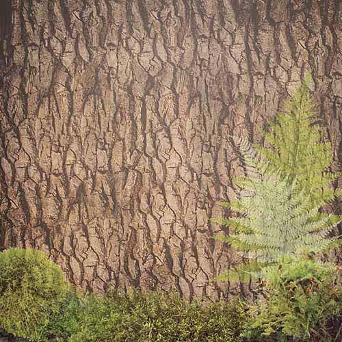 "Paper House Camping Paper, 12"" x 12"", 25pk, Tree Bark"