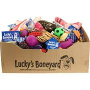 Petsport 066300 Luckys Boneyard Tear Away Carton Display - Assorted, 60 Piece