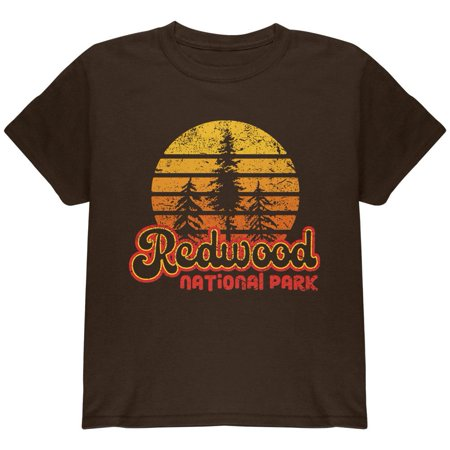 National Park Retro 70s Sunset Redwood Youth T Shirt](70s Items)