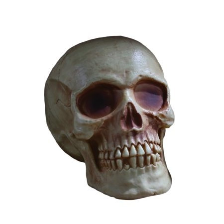Diy Scary Halloween Decorations Outdoor (Fun World Scary Halloween Skull with Jaw Table Decoration, 8