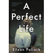 A Perfect Life - eBook