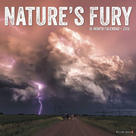 2019 Natures Fury Wall Calendar, by Willow Creek Press
