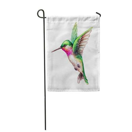 LADDKE Colorful Watercolor Flying Hummingbird Exotic Tropical Wild Life Clip Green Garden Flag Decorative Flag House Banner 12x18 - Hummingbird Clip
