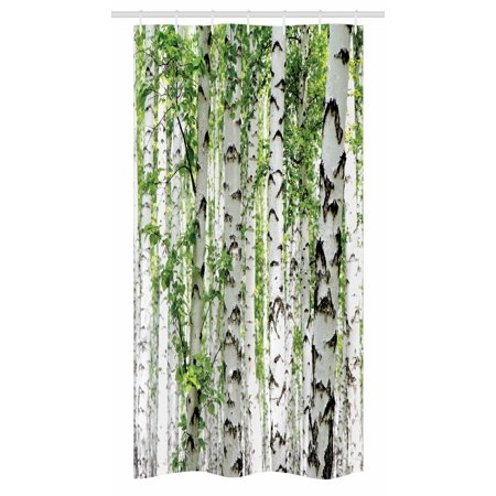 Woodland Stall Shower Curtain Birch Trees In The Forest Summertime Wildlife Nature Outdoors Themed Picture Fabric Bathroom Set With Hooks 36w X 72l