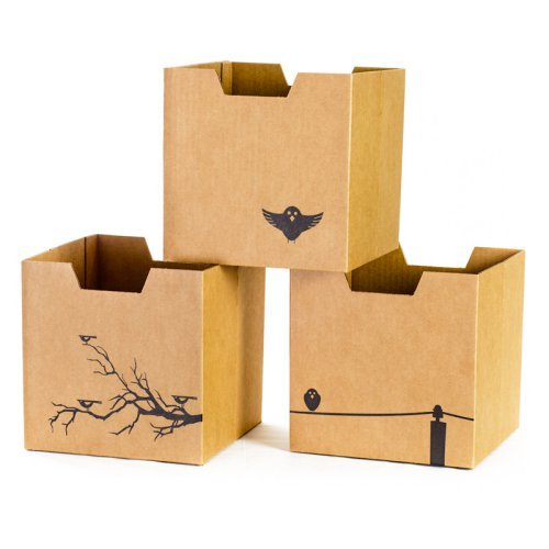 Sprout Bird Print Cardboard Cubby Bins - 3 pack