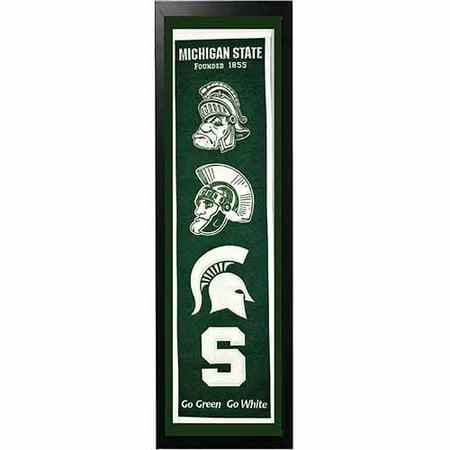 Michigan State Banner - NCAA 14