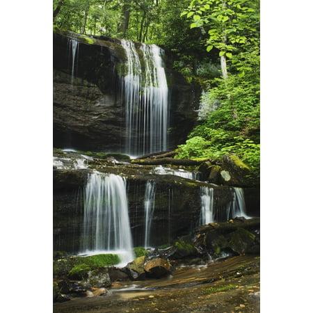 North Carolina United States Of America Lush Summer Foliage At Grassy Creek Falls Stretched Canvas - Natural Selection Robert Cable  Design Pics (24 x 38) (Carolina Pr)