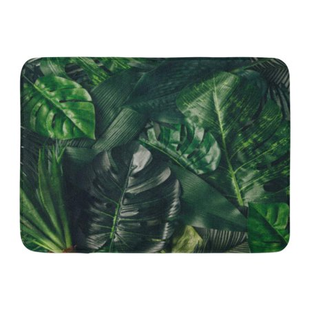 GODPOK Green Leaf Creative Nature Made of Tropical Leaves and Flowers Flat Lay Summer Concept Colorful Jungle Rug Doormat Bath Mat 23.6x15.7 - Tropical Lay