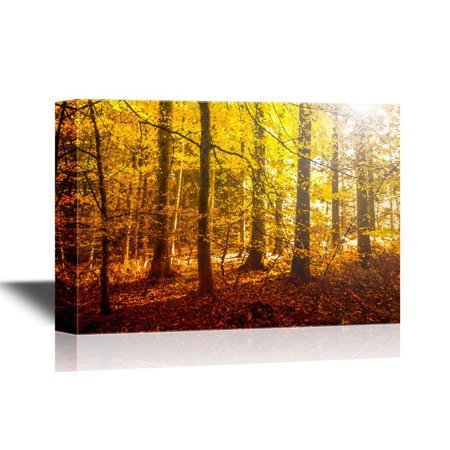 wall26 Forest Canvas Wall Art - Fantasy Golden Sun Light in the Autumn Forest Landscape - Gallery Wrap Modern Home Decor | Ready to Hang - 32x48 - Autumn Decor