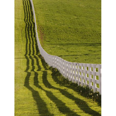 Fence and Shadow on Horse Farm at Sunset, Lexington, Ky Print Wall Art By Adam Jones - Halloween Store Lexington Ky