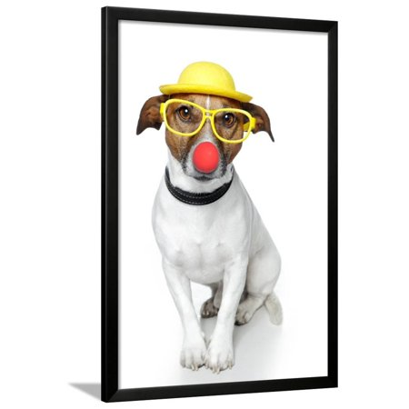 Funny Dog Nose Hat Glasses Framed Print Wall Art By Javier Brosch (Funny Glasses And Nose)