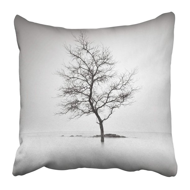 Arhome Colorful Lone Tree Partially Submerged In The Water Long Exposure Black And White Pillow Case Cushion Cover 20x20 Inch Walmart Com Walmart Com