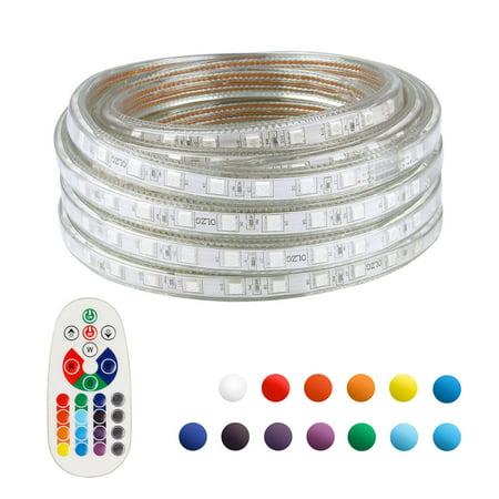 60 Led Decoration (LED Strip Light Remote Controller RGB Waterproof Rope Light Flexible Multi-color Change Landscape Light for Party Holiday Home Decoration 5050 SMD 60 LEDs/M AD 110V 20 Ft )