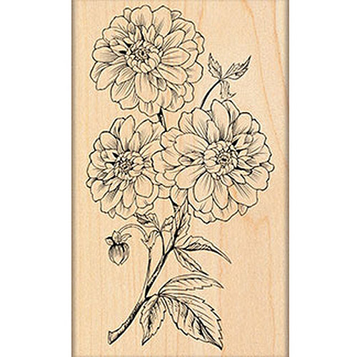 "Penny Black Mounted Rubber Stamp, 2.75"" x 4.5"", Dahlia Dance"