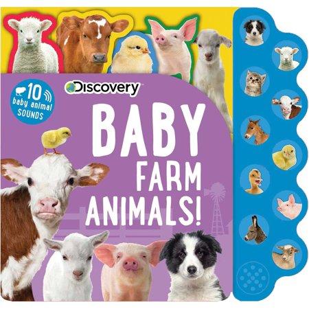 Discovery: Baby Farm Animals!