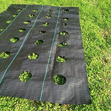 Agfabric Landscape Easy-Plant Weed Block Mulch,Weed Barrier Fabric with  planting hole, - Agfabric Landscape Easy-Plant Weed Block Mulch,Weed Barrier Fabric