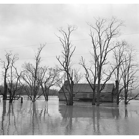 Virginia Flood 1936Nfarmland Flooded By The Shenandoah River In Virginia Photograph By Arthur Rothstein March 1936 Rolled Canvas Art     18 X 24