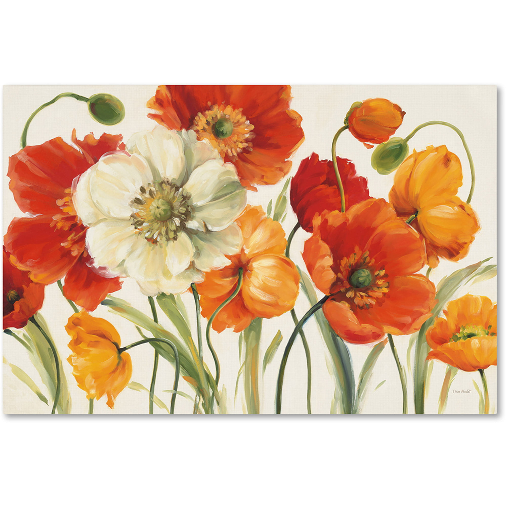 "Trademark Fine Art ""Poppies Melody I"" Canvas Art by Lisa Audit by Trademark Global LLC"