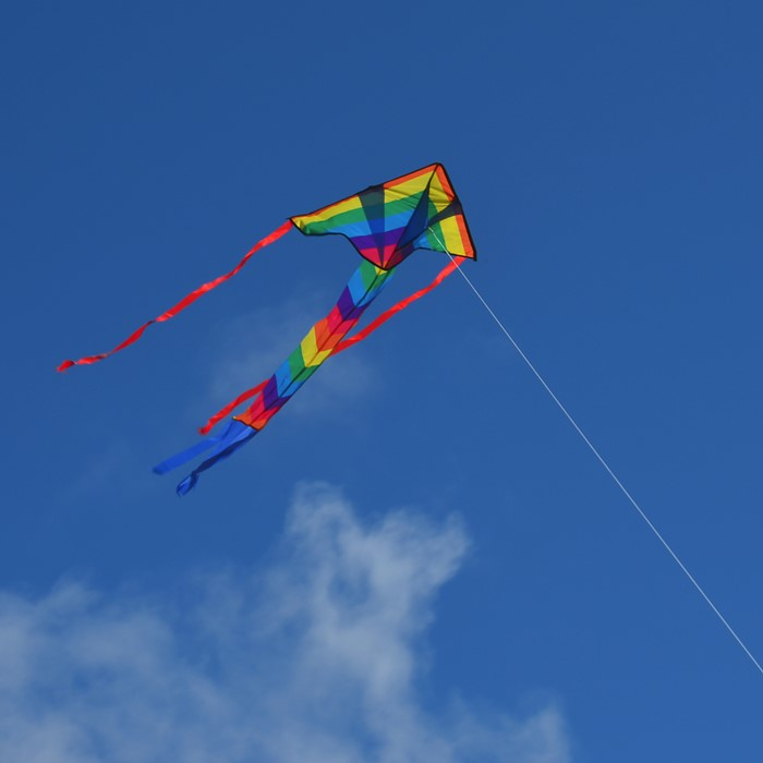 In The Breeze Rainbow Arrow Fly Hi Delta Kite 29-Inch 2906