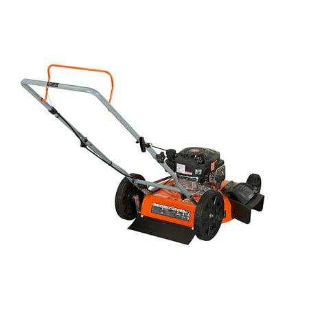"YARDMAX  21"" 2-in-1 Gas-Powered Push Mower 170cc YG1550"