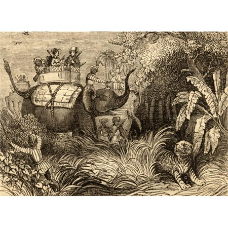 Posterazzi DPI1857559 Hunting Tigers in India Poster Print, 18 x 13 - image 1 de 1
