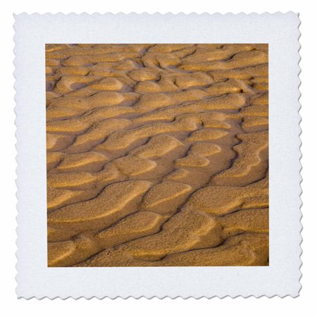 3dRose Lake Michigan, Sleeping Bear Dunes, Michigan - US23 CHA0066 - Chuck Haney - Quilt Square, 8 by (Best Sleeping Pad For Quilt)
