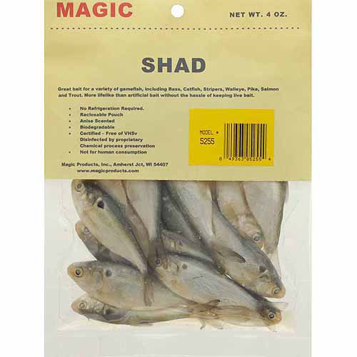 Magic Products Preserved Shad, 4 oz