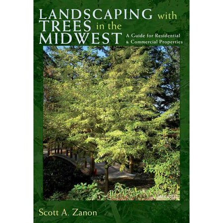 Landscaping With Trees In The Midwest  A Guide For Residential   Commercial Properties