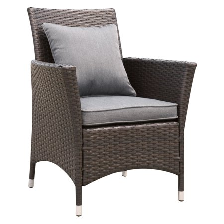 Furniture of America Karrot Contemporary Outdoor Dining Arm Chair ()