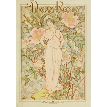 Dream Roses 1897 Woman In Pink Poster Print By  Laura C Hills