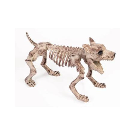 Bone Skeleton Dog Prop Halloween Decoration](Dog Decorations)