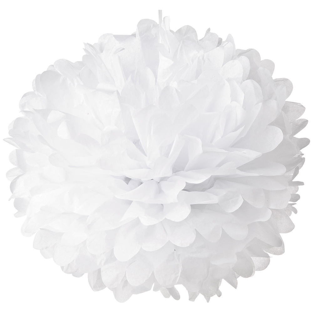 Luna Bazaar Tissue Paper Pom Pom (10-Inch, White) - For Baby Showers, Nurseries, and Parties - Hanging Paper Flower Decorations