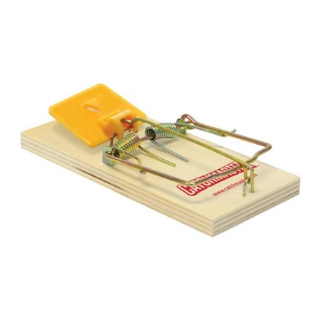 A P   G 610French Rat Size Wood Trap