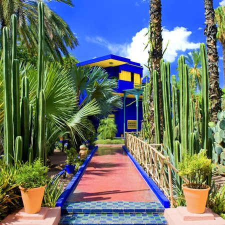 Jardin Majorelle Marrakech Morocco North Africa Africa Print Wall Art By Philippe Hugonnard