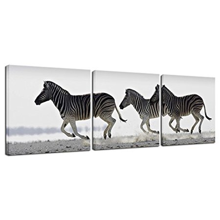 Pyradecor Zebra Canvas Prints Wall Art Black And White Animals Pictures Paintings For Living Room Bedroom Bathroom Home Decorations 3 Piece Modern Stretched And Framed Giclee Horse Artwork Walmart Canada
