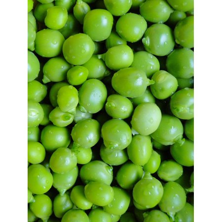 Canvas Print Green Peas Garden Vegetables Shelled Fresh Stretched Canvas 10 x -