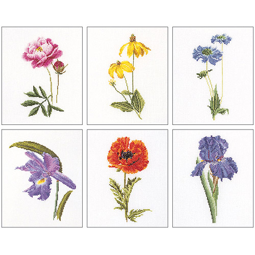 Thea Gouverneur Counted Cross-Stitch Kits, Floral Studies 5, Set of 6