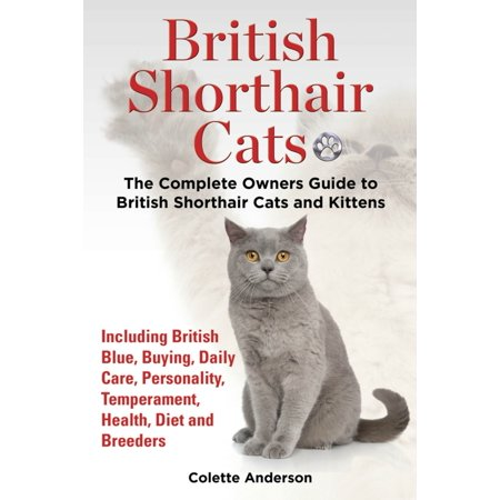 British Shorthair Cats, The Complete Owners Guide to British Shorthair Cats and Kittens Including British Blue, Buying, Daily Care, Personality, Temperament, Health, Diet and Breeders - (Best Bengal Cat Breeders)