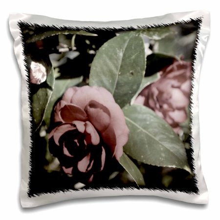 3dRose Camellia Faded Color is a photo drained of color except a tiny bit - Pillow Case, 16 by 16-inch