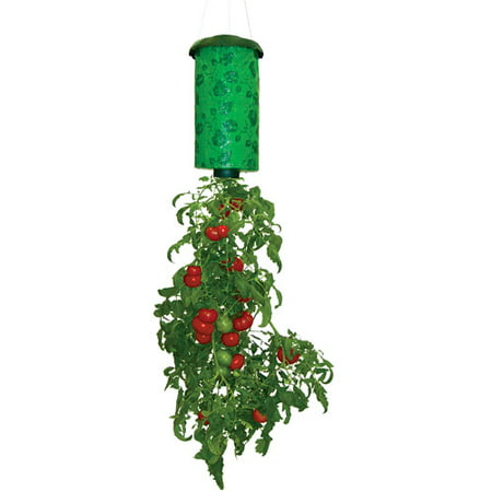 Allstar Marketing Tt011112 Topsy Turvyᅡᆴ Upside Down Tomato Planter