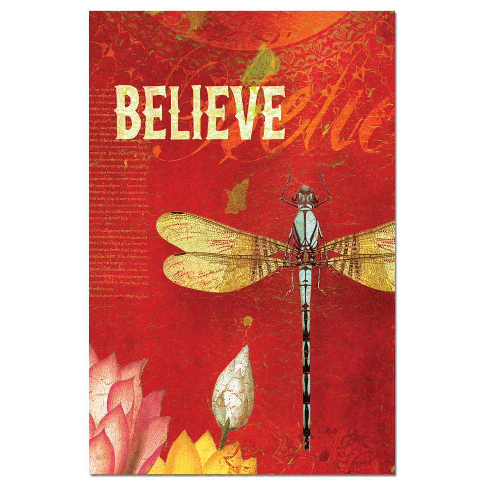 Tree-Free Greetings Believe Boxed ECOnotes Blank Note Cards-FS66548