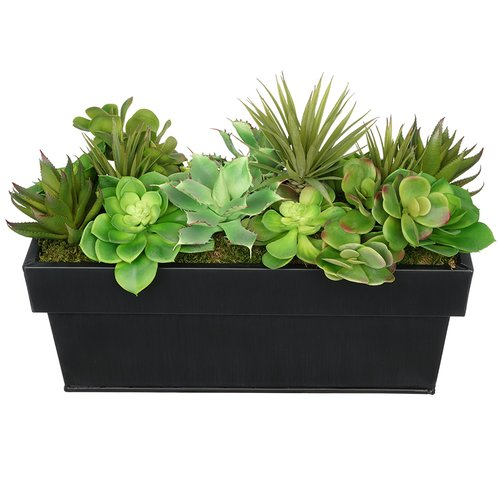 House of Silk Flowers Inc. Artificial Succulent in Planter